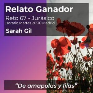 sarah gil amapolas y lilas